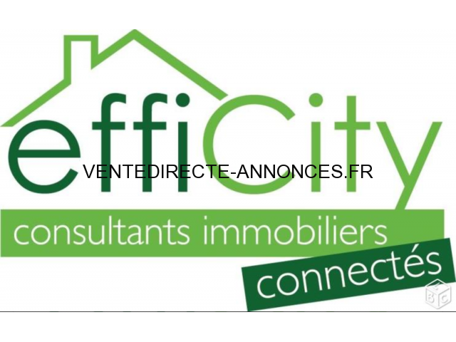 Consultant Immobilier